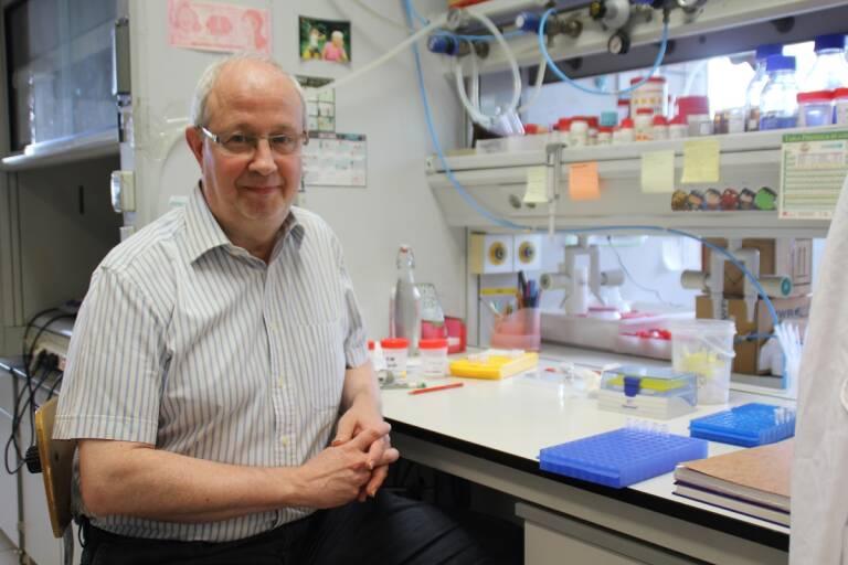 Ramón Martínez Mañez, director del Instituto de Investigación de Reconocimiento molecular y Desarrollo Tecnológico (IDM)
